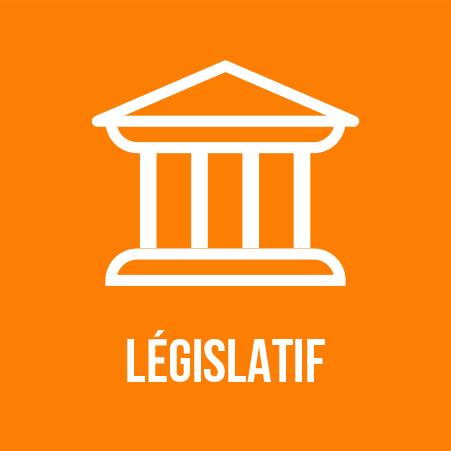 Cadre législatif 2016-1074 électromagnétique
